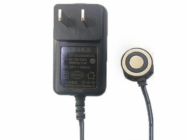 Alimentation rechargeable ZD12D250050CN