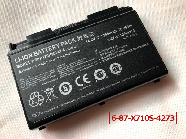 Batterie ordinateur portable P150HMBAT-8